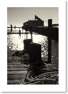 Black and White Photography For Sale. Black and white photography for sale.