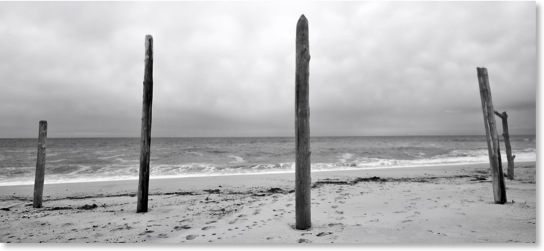 Head of the meadow Truro beach. Black and white beach