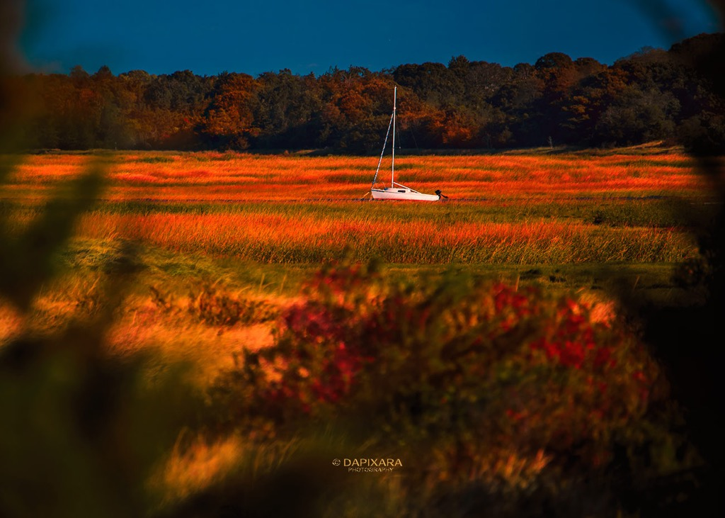 Fall Perfection at Eastham Marshlands Today | Amazingly Beautiful Nature And Travel Photography Of Cape Cod National Seashore