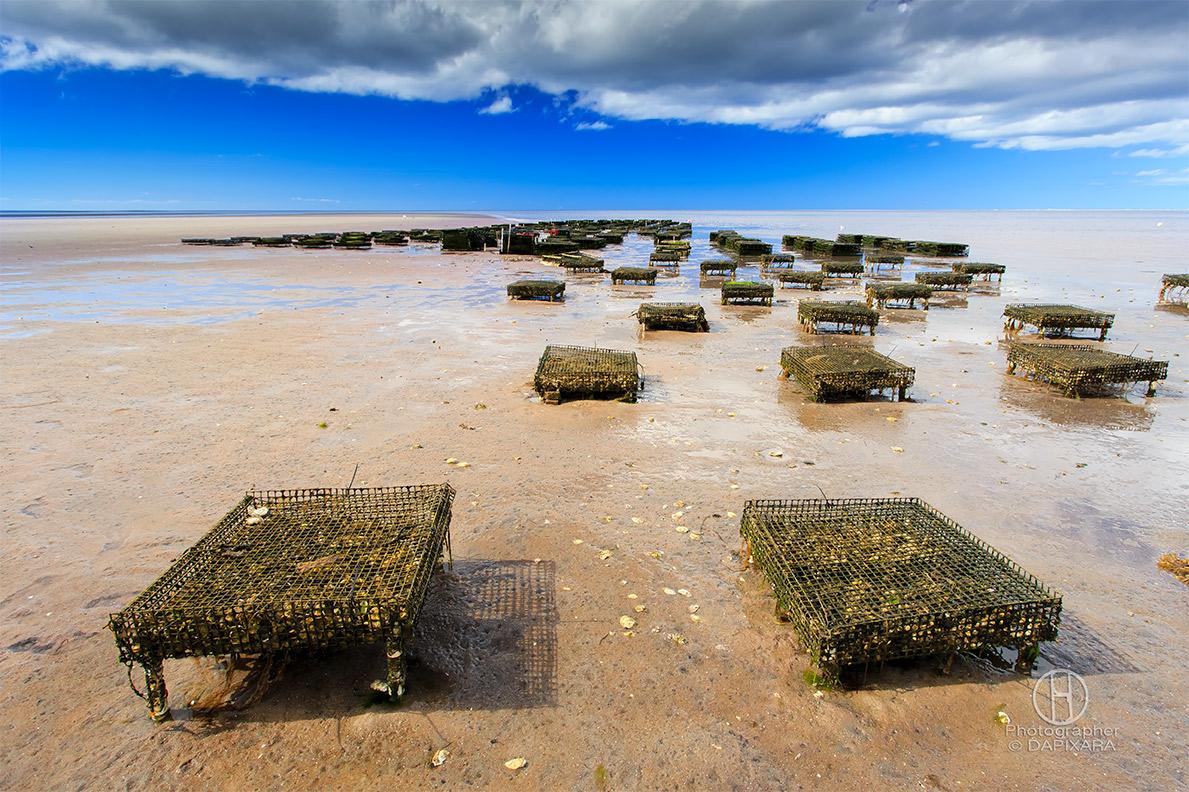Tidal Flats - Brewster, Cape Cod   The Official Dapixara ...