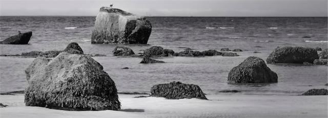 Beach scene prints