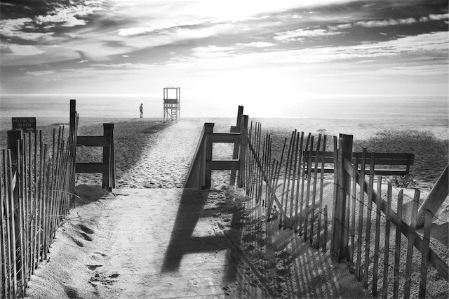 The beach in black and white nauset beach