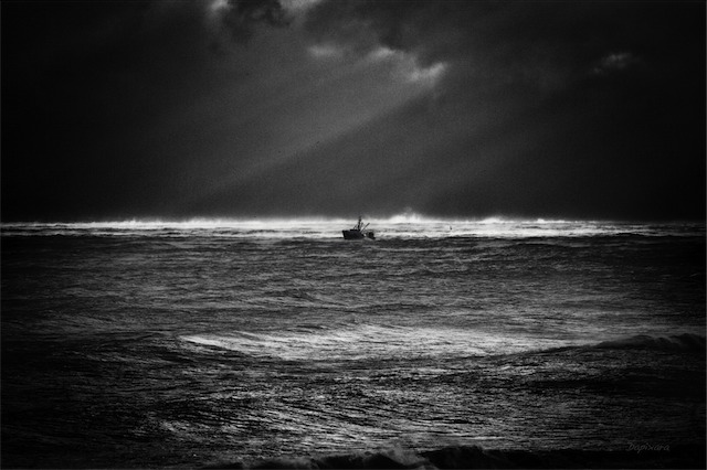 Black and White Photography Galleries. Black white photo