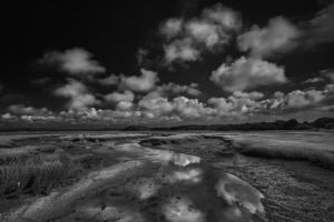 Black And White Landscape Photos For Sale Dapixara Select From A Range Of Most Liked Black And White Landscape Photos With Custom Framing Canvas More